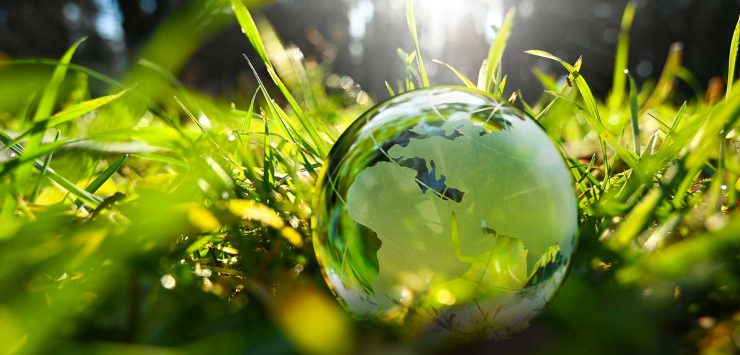 In view of the climate crisis, internationally operating online retailers are developing sustainable, ecologically friendly strategies for their businesses.